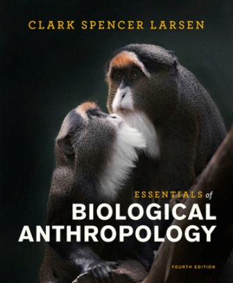 Test Bank for Essentials of Biological Anthropology 4th Edition Larsen