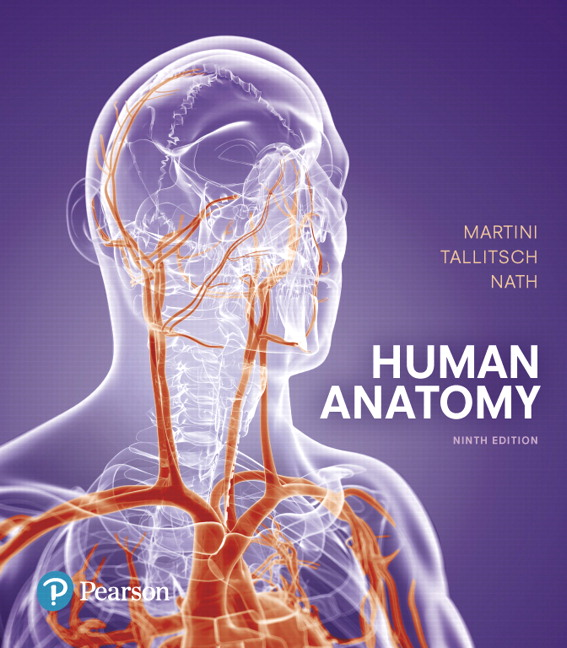 Solution Manual For Human Anatomy, 9th Edition By Frederic H. Martini,Robert B. Tallitsch,Judi L. Nath,ISBN-13:9780134292281
